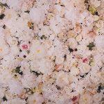 backdrop achtergrond bloemen flowers
